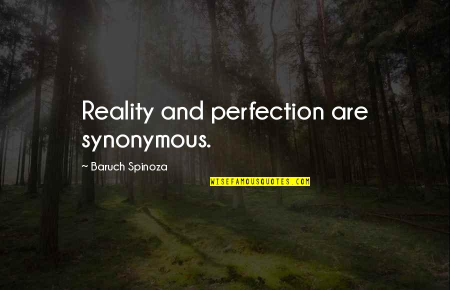 Synonymous Quotes By Baruch Spinoza: Reality and perfection are synonymous.