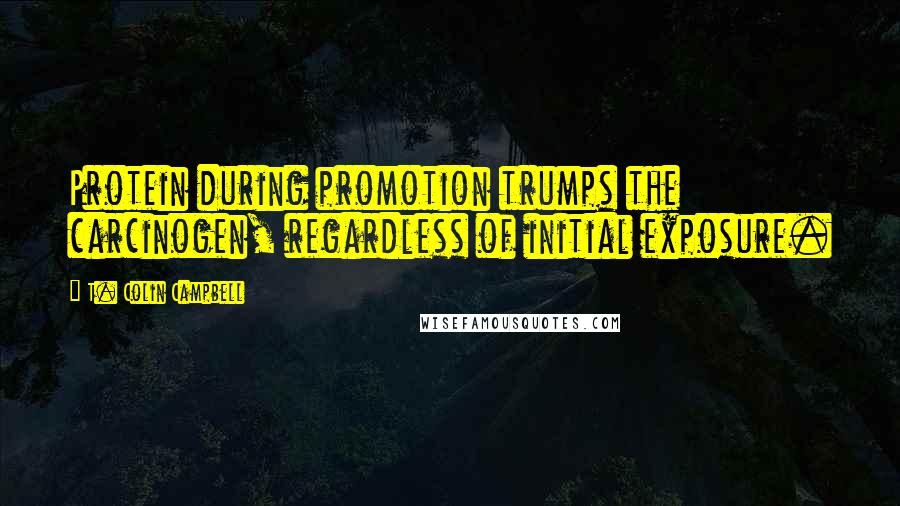 T. Colin Campbell quotes: Protein during promotion trumps the carcinogen, regardless of initial exposure.