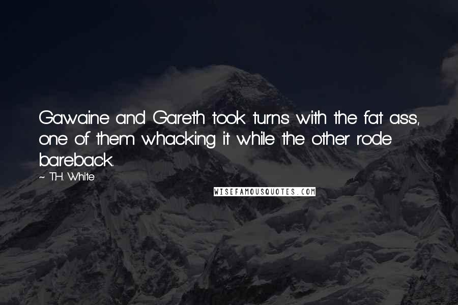 T.H. White quotes: Gawaine and Gareth took turns with the fat ass, one of them whacking it while the other rode bareback.