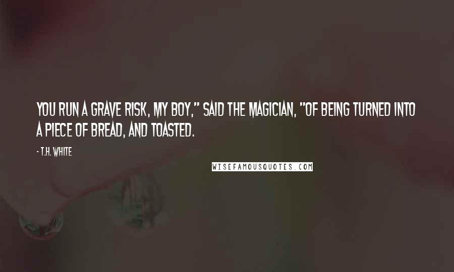 "T.H. White quotes: You run a grave risk, my boy,"" said the magician, ""of being turned into a piece of bread, and toasted."