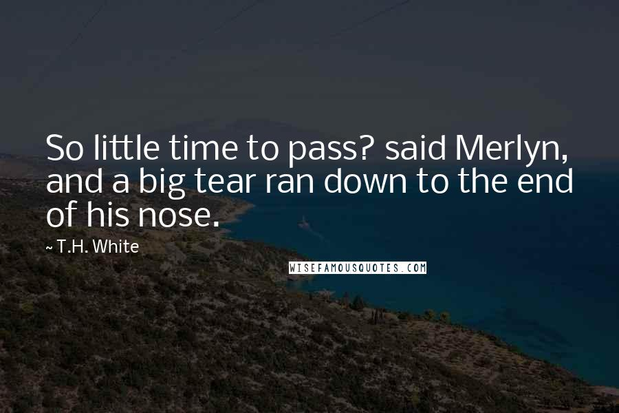 T.H. White quotes: So little time to pass? said Merlyn, and a big tear ran down to the end of his nose.