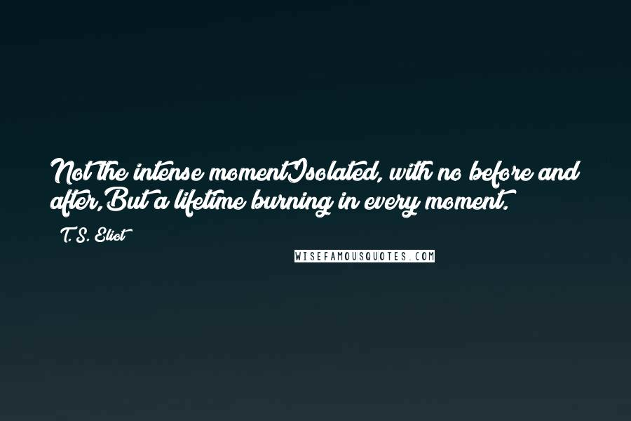 T. S. Eliot quotes: Not the intense momentIsolated, with no before and after,But a lifetime burning in every moment.