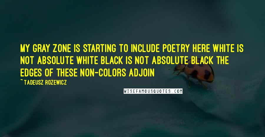 Tadeusz Rozewicz quotes: My gray zone is starting to include poetry here white is not absolute white black is not absolute black the edges of these non-colors adjoin