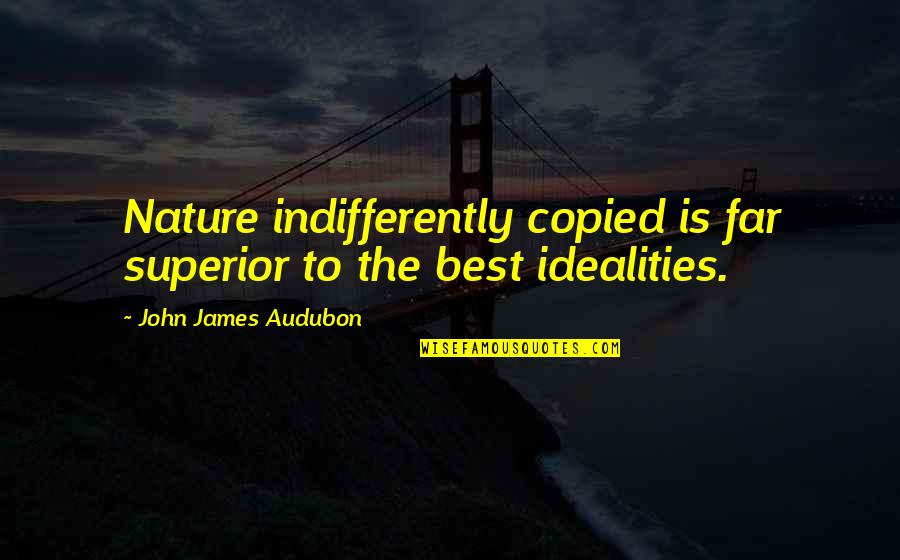 Taig Quotes By John James Audubon: Nature indifferently copied is far superior to the