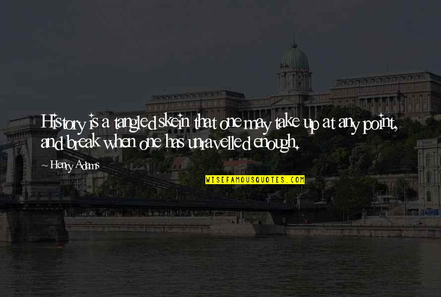 Take A Break Quotes By Henry Adams: History is a tangled skein that one may
