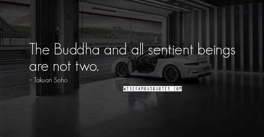 Takuan Soho quotes: The Buddha and all sentient beings are not two.