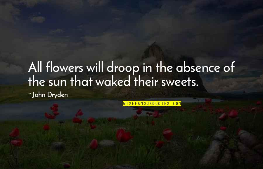 Taleggio Quotes By John Dryden: All flowers will droop in the absence of