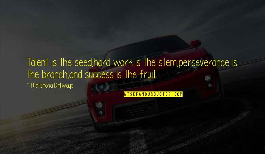 Talent And Hard Work Quotes By Matshona Dhliwayo: Talent is the seed,hard work is the stem,perseverance