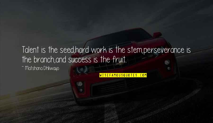 Talent Quotes And Quotes By Matshona Dhliwayo: Talent is the seed,hard work is the stem,perseverance