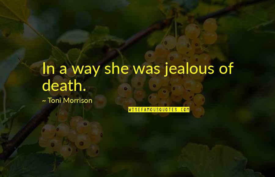 Talking To Someone Everyday Then Stopping Quotes By Toni Morrison: In a way she was jealous of death.