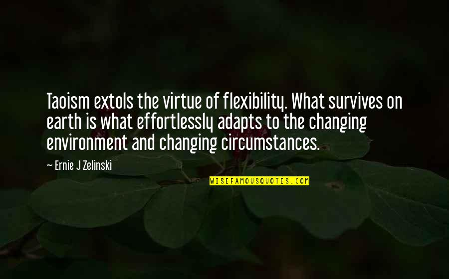 Taoism Change Quotes By Ernie J Zelinski: Taoism extols the virtue of flexibility. What survives