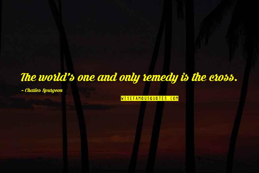 Task Forces Quotes By Charles Spurgeon: The world's one and only remedy is the