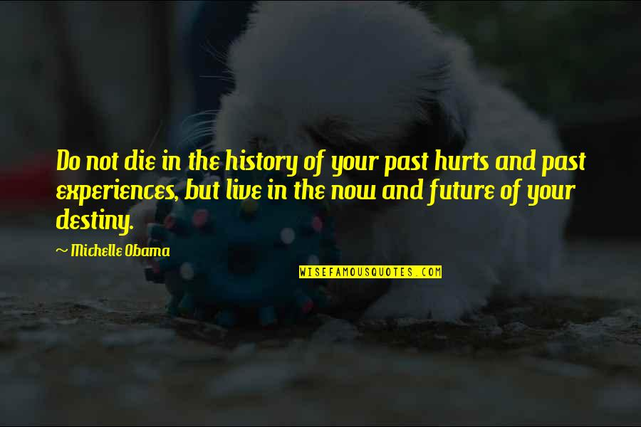 Tattooine Quotes By Michelle Obama: Do not die in the history of your