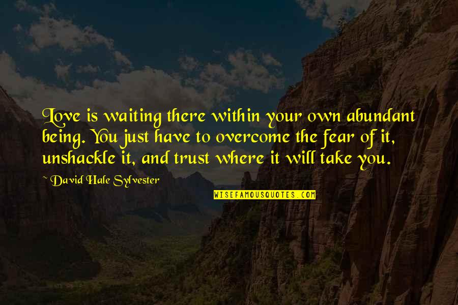 Taylor Ambrose Quotes By David Hale Sylvester: Love is waiting there within your own abundant