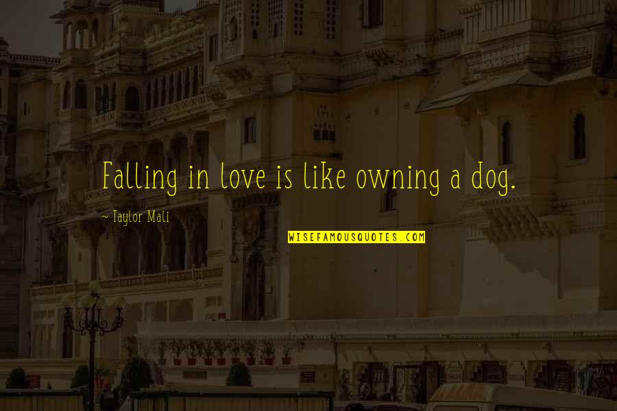 Taylor Mali Quotes By Taylor Mali: Falling in love is like owning a dog.