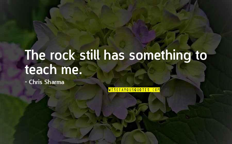 Teach Me Something Quotes By Chris Sharma: The rock still has something to teach me.