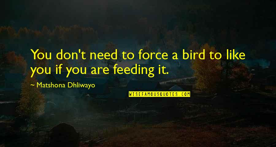 Teacher Always Learning Quotes By Matshona Dhliwayo: You don't need to force a bird to