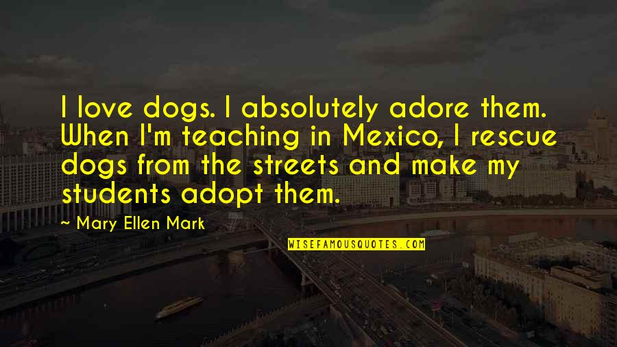 Teaching Love Quotes By Mary Ellen Mark: I love dogs. I absolutely adore them. When