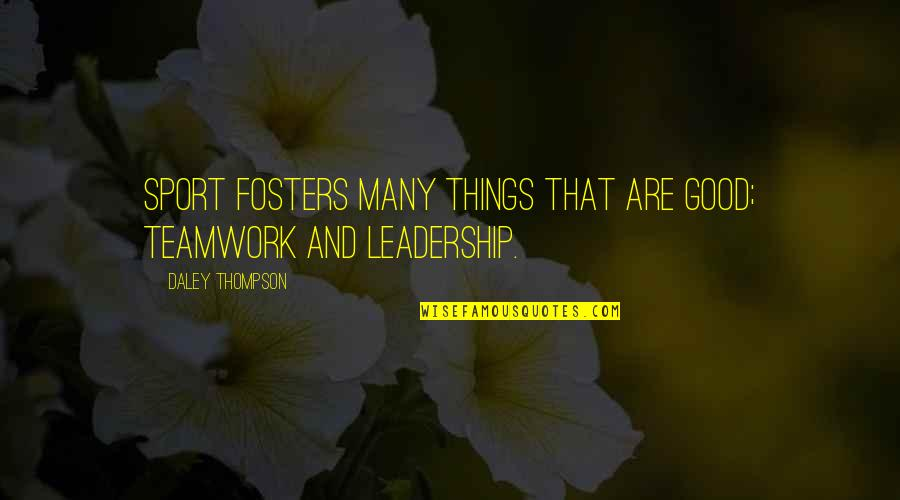 Teamwork In Sports Quotes By Daley Thompson: Sport fosters many things that are good; teamwork
