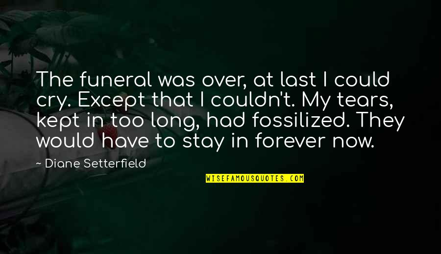 Tears I Cry Quotes By Diane Setterfield: The funeral was over, at last I could