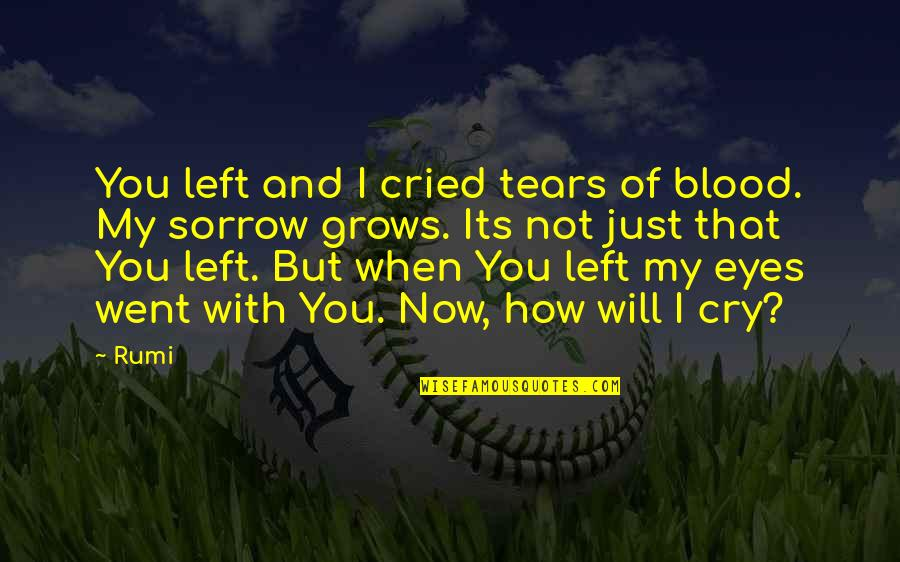 Tears I Cry Quotes By Rumi: You left and I cried tears of blood.