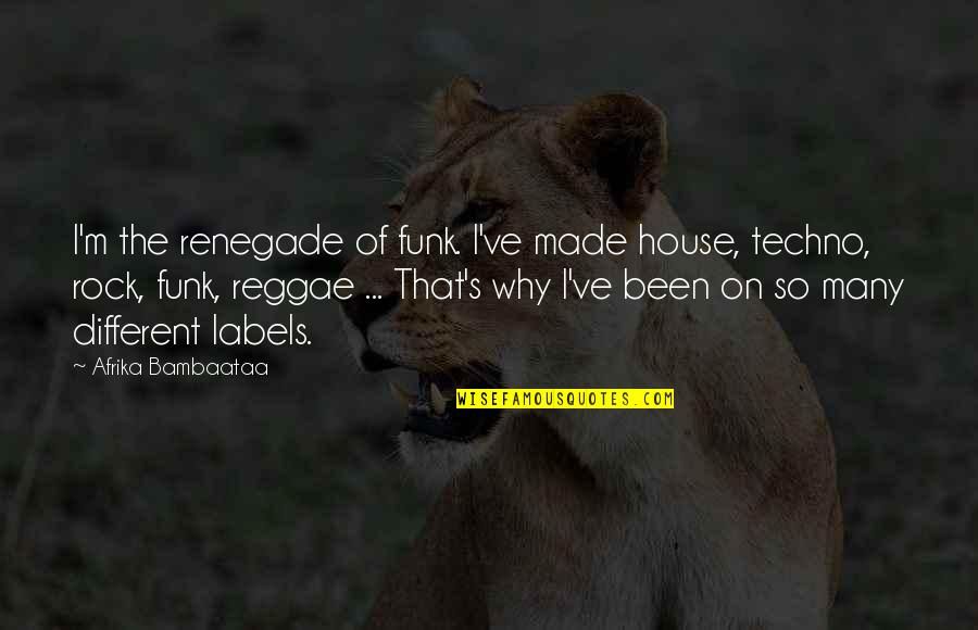 Techno Quotes By Afrika Bambaataa: I'm the renegade of funk. I've made house,
