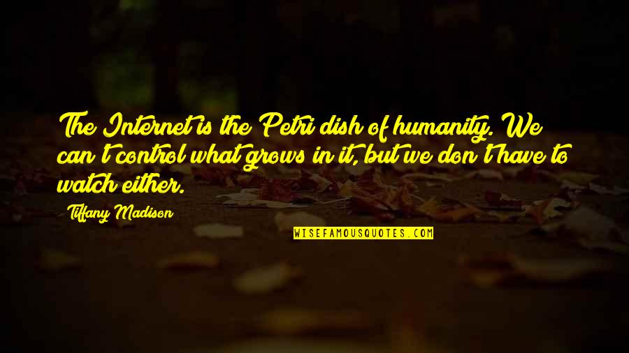 Technology And Our Society Quotes By Tiffany Madison: The Internet is the Petri dish of humanity.