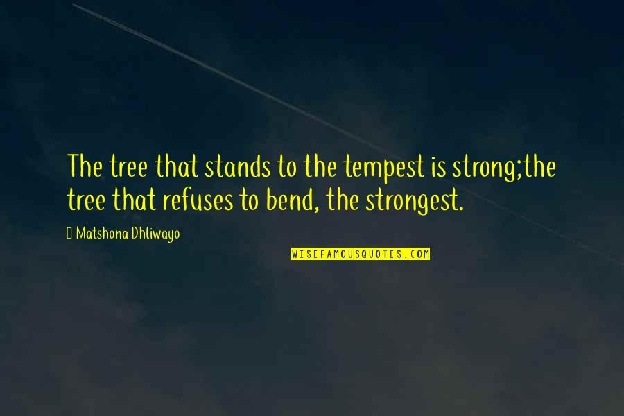 Technophobe Quotes By Matshona Dhliwayo: The tree that stands to the tempest is