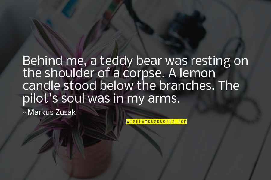 Teddy Bear Quotes By Markus Zusak: Behind me, a teddy bear was resting on
