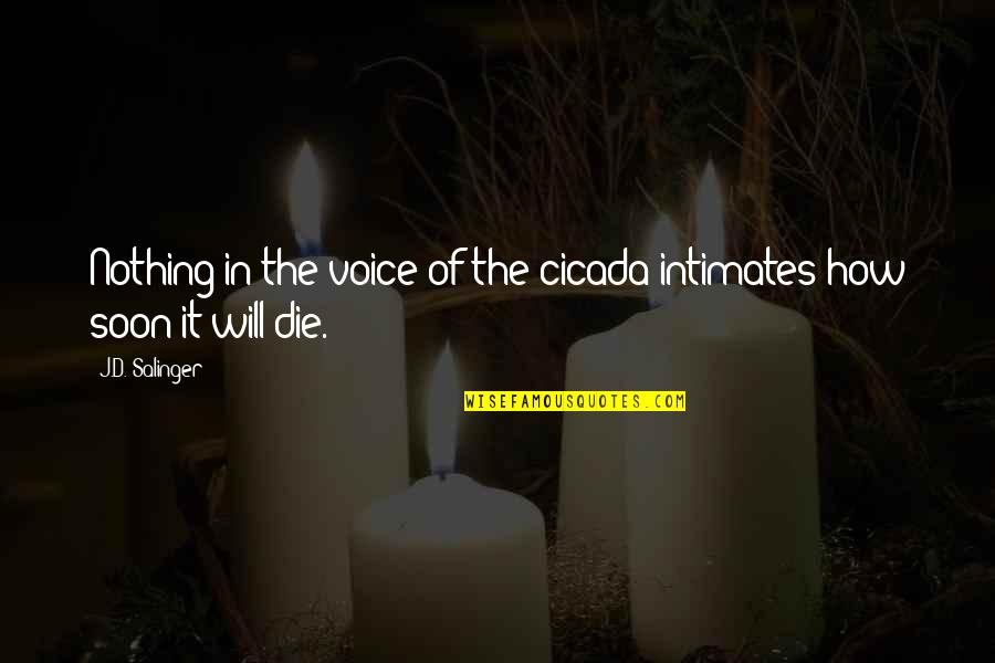 Teddy Nine Stories Quotes By J.D. Salinger: Nothing in the voice of the cicada intimates