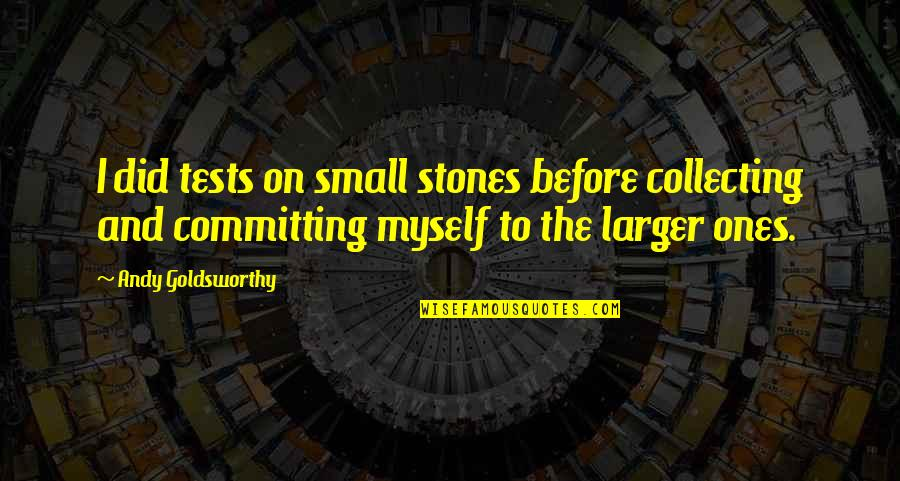 Telethons Quotes By Andy Goldsworthy: I did tests on small stones before collecting