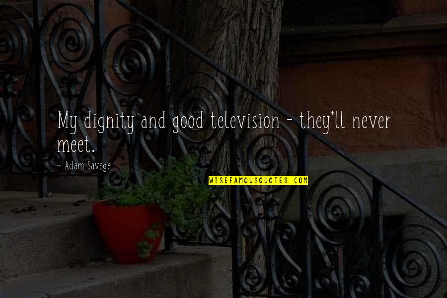 Television Quotes By Adam Savage: My dignity and good television - they'll never