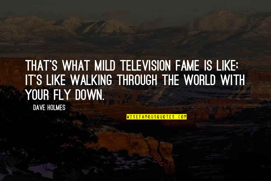 Television Quotes By Dave Holmes: That's what mild television fame is like: it's