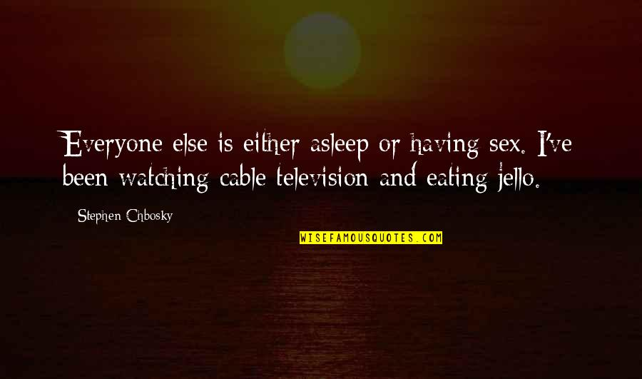 Television Quotes By Stephen Chbosky: Everyone else is either asleep or having sex.