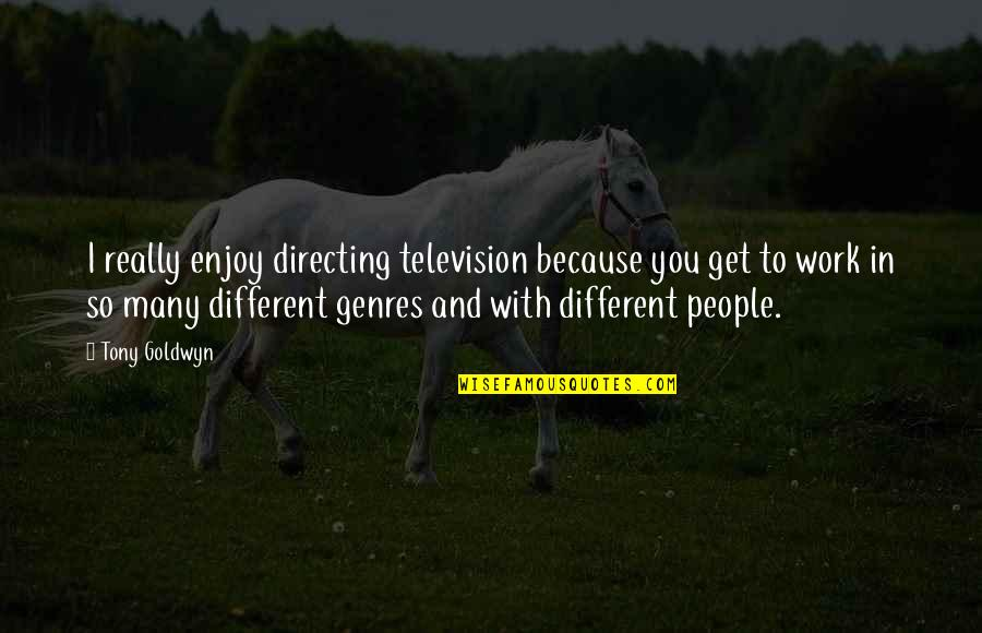 Television Quotes By Tony Goldwyn: I really enjoy directing television because you get
