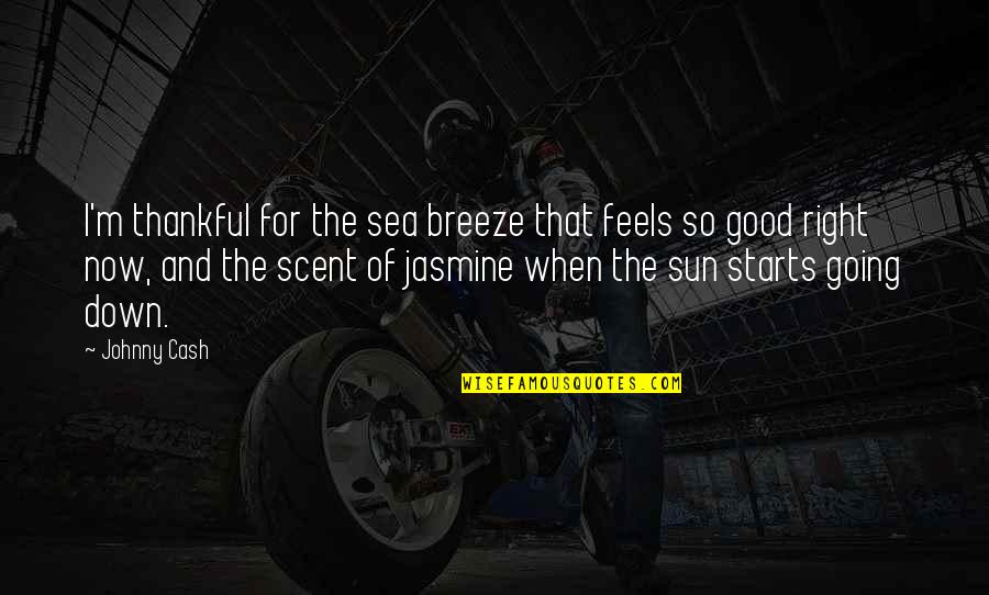 Telling The Truth Tagalog Quotes By Johnny Cash: I'm thankful for the sea breeze that feels