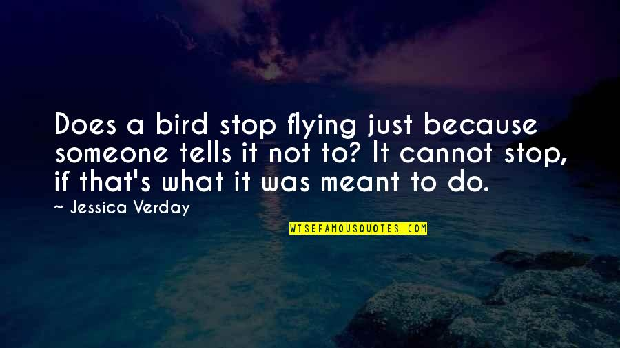 Tells Quotes By Jessica Verday: Does a bird stop flying just because someone