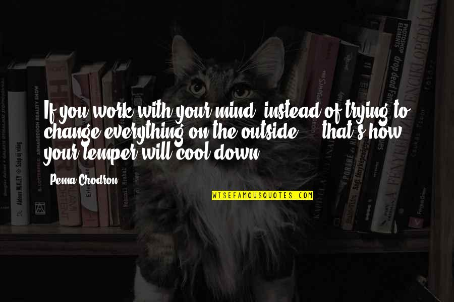 Temper'll Quotes By Pema Chodron: If you work with your mind, instead of