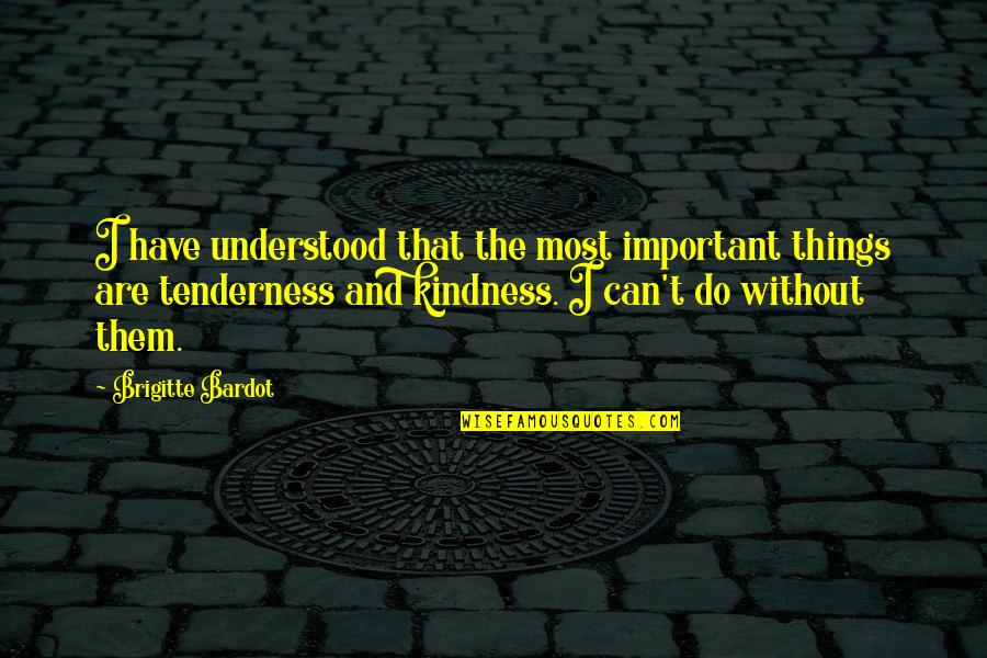 Tenderness And Kindness Quotes By Brigitte Bardot: I have understood that the most important things