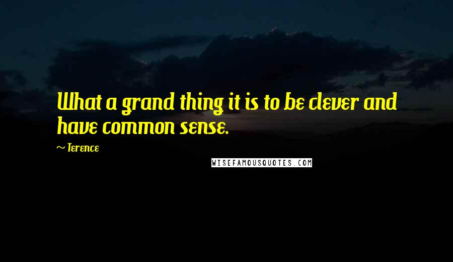 Terence quotes: What a grand thing it is to be clever and have common sense.