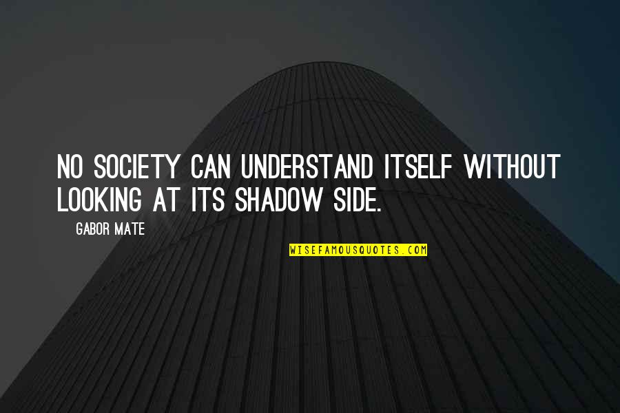 Terrence Cutler Eastbound And Down Quotes By Gabor Mate: No society can understand itself without looking at