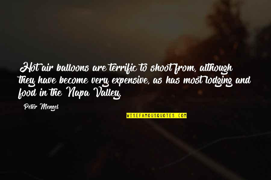 Terrific Quotes By Peter Menzel: Hot air balloons are terrific to shoot from,