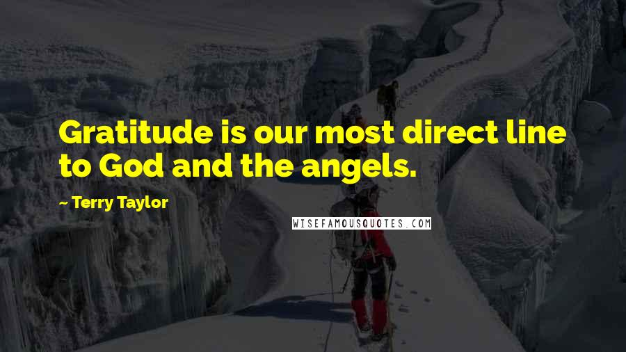 Terry Taylor quotes: Gratitude is our most direct line to God and the angels.