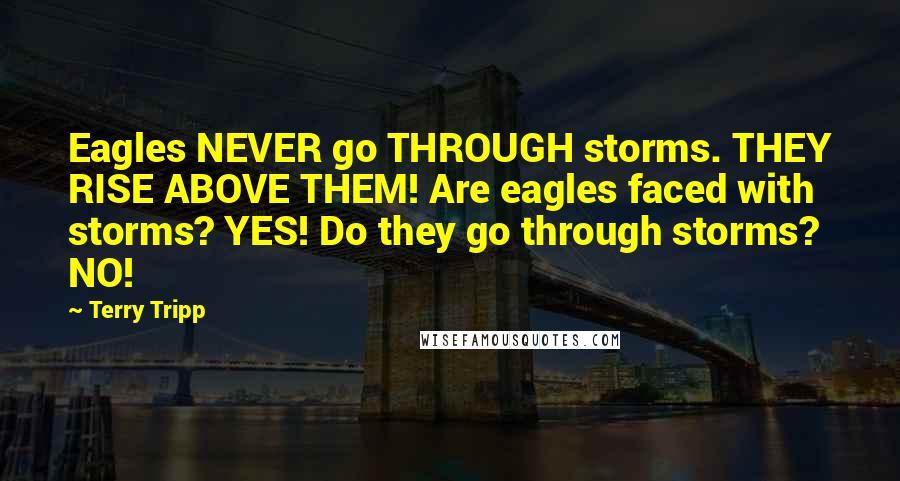 Terry Tripp quotes: Eagles NEVER go THROUGH storms. THEY RISE ABOVE THEM! Are eagles faced with storms? YES! Do they go through storms? NO!