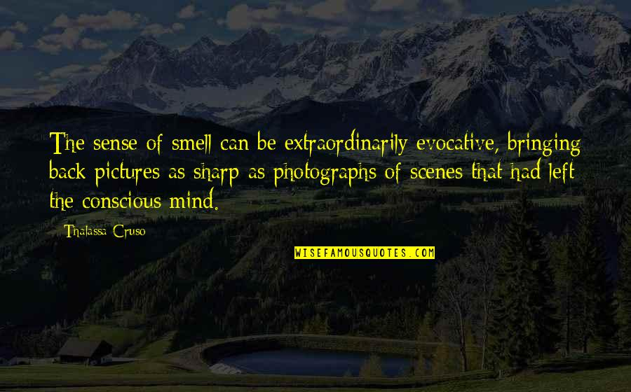 Thalassa Cruso Quotes By Thalassa Cruso: The sense of smell can be extraordinarily evocative,