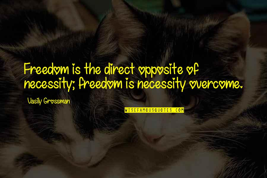 Thanks For Chatting With Me Quotes By Vasily Grossman: Freedom is the direct opposite of necessity; freedom