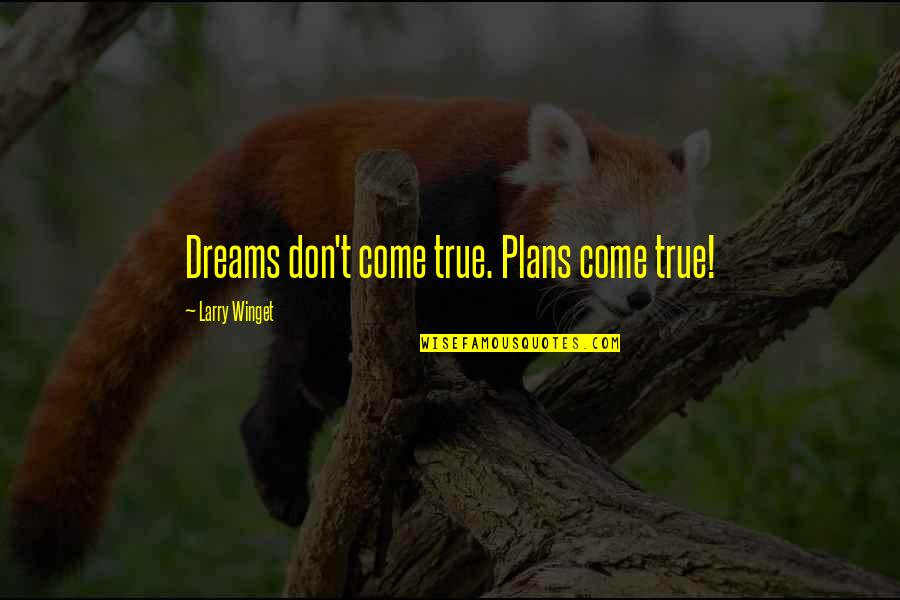 Thanks For The Likes And Comments Quotes By Larry Winget: Dreams don't come true. Plans come true!