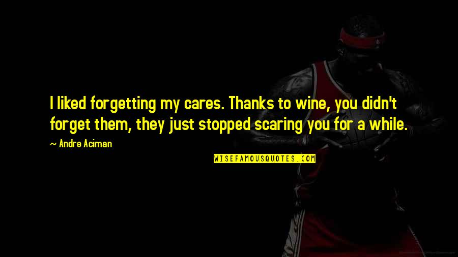 Thanks To You Quotes By Andre Aciman: I liked forgetting my cares. Thanks to wine,