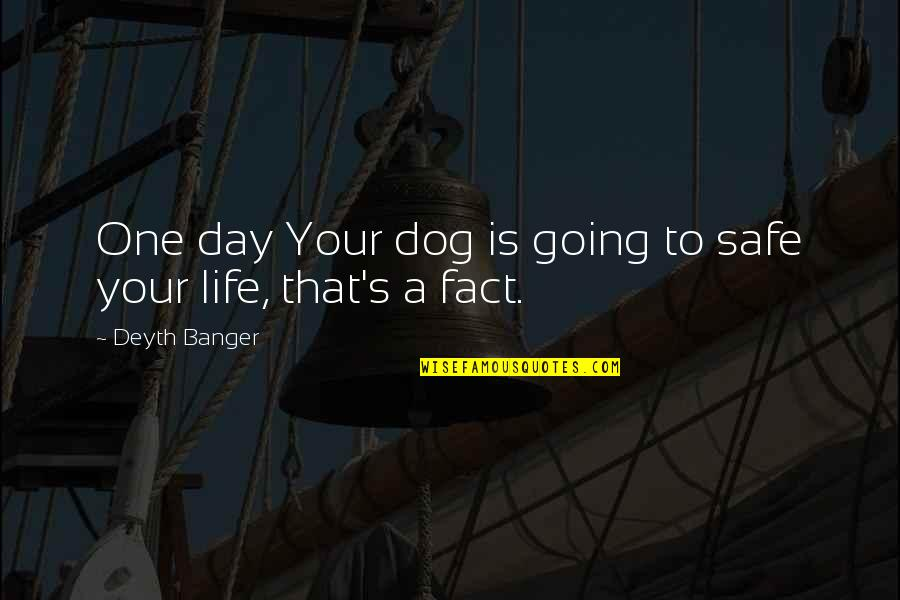 That One Day Quotes By Deyth Banger: One day Your dog is going to safe