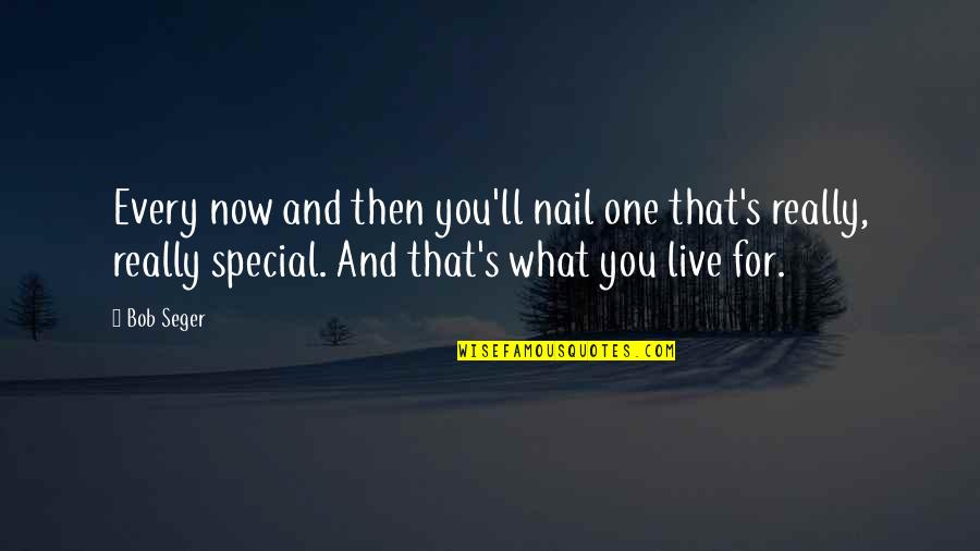 That Special One Quotes By Bob Seger: Every now and then you'll nail one that's